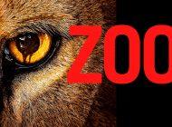 """Renovación CBS: """"Zoo"""" tendrá 3ª temporada"""