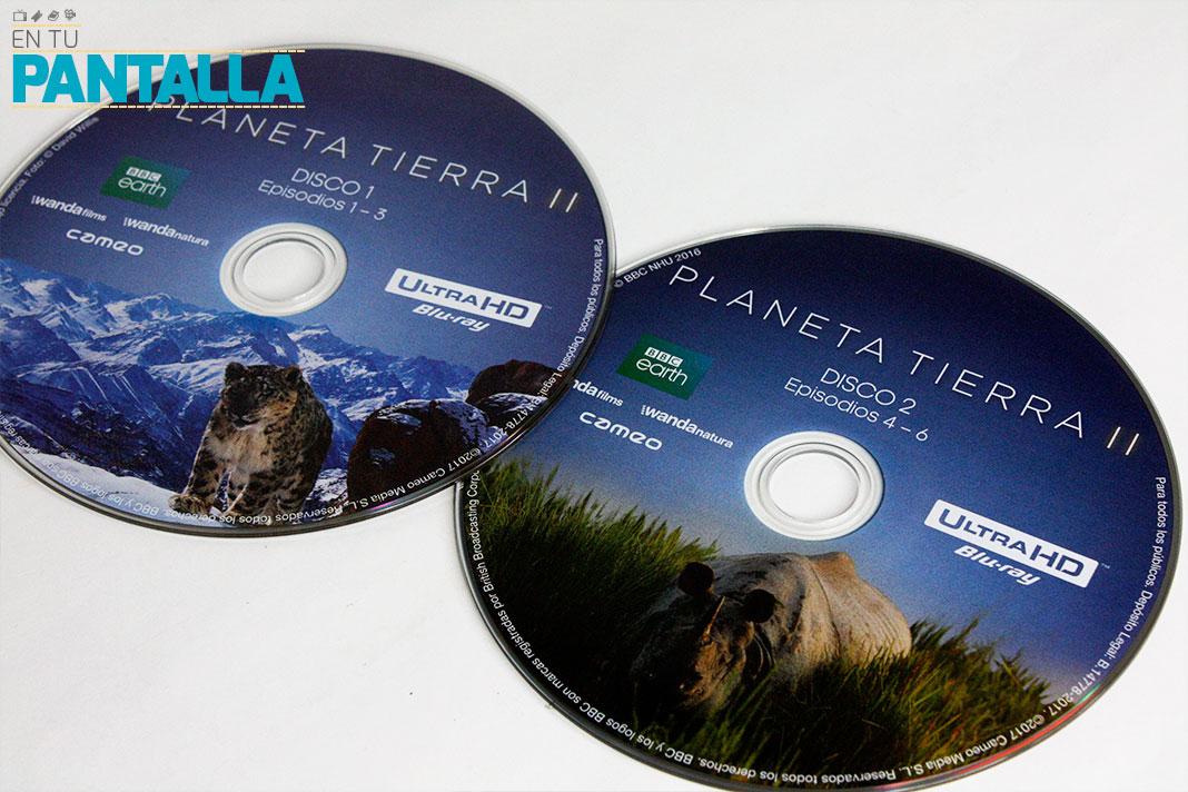 'Planeta Tierra 2', nos llega el primer 4K Ultra HD de Cameo • En tu pantalla