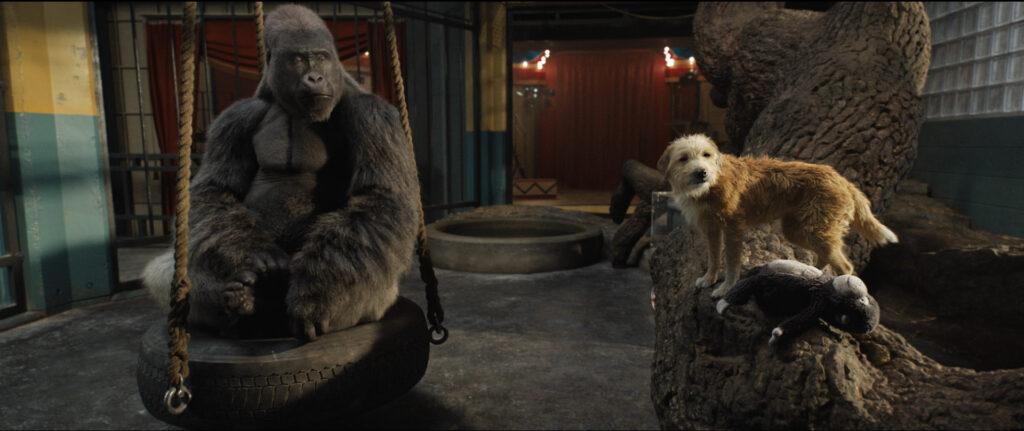 Ivan (Sam Rockwell) y Bob (Danny DeVito) en 'El Magnífico Iván. (Fuente: Disney+)