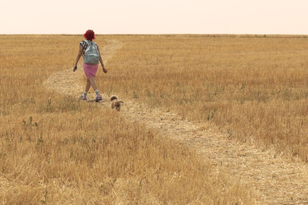 'Rainbow': Primeras imágenes de la nueva película de Paco León • En tu pantalla